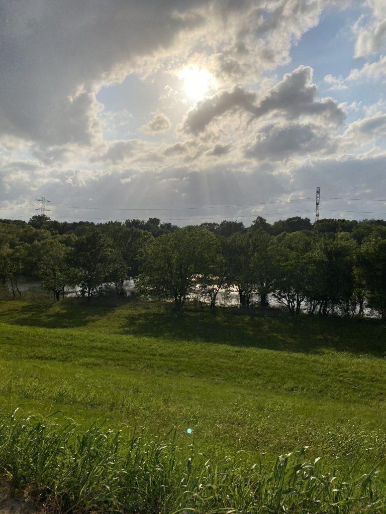 Houston trails