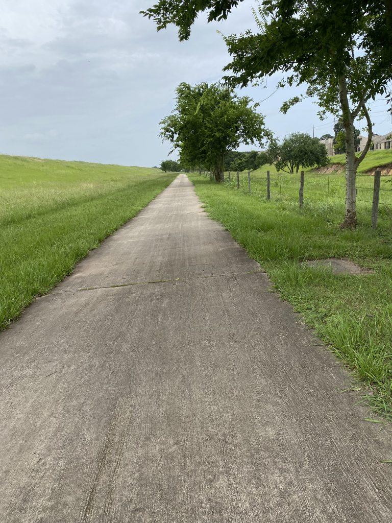 houston walk