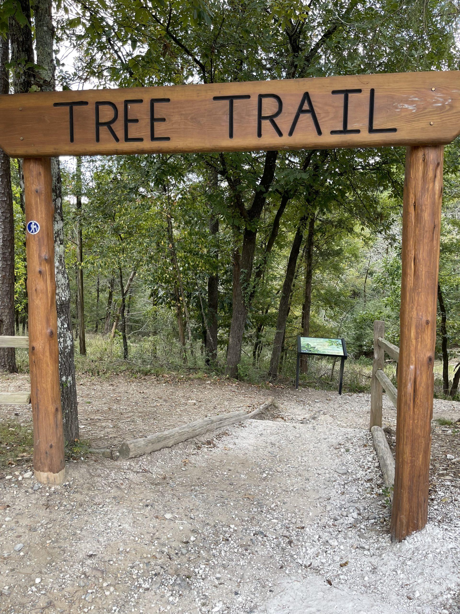Tree Trail | beavers bend state park