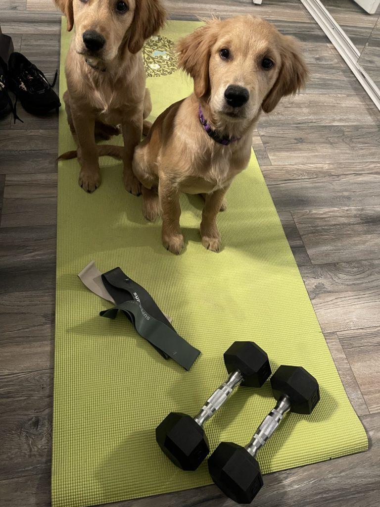 kira Stokes workout